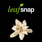 Leafsnap Mobile App