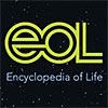 Encyclopedia of Life (EOL)