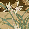 The Orchid in Chinese Painting
