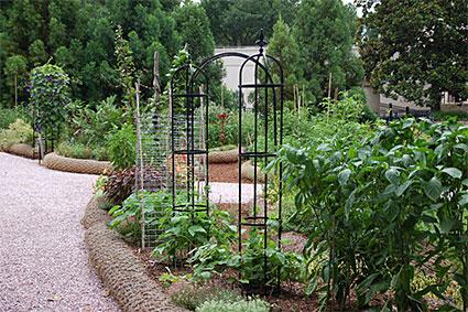 victory garden - The Victory Garden