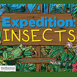 Expedition: Insects