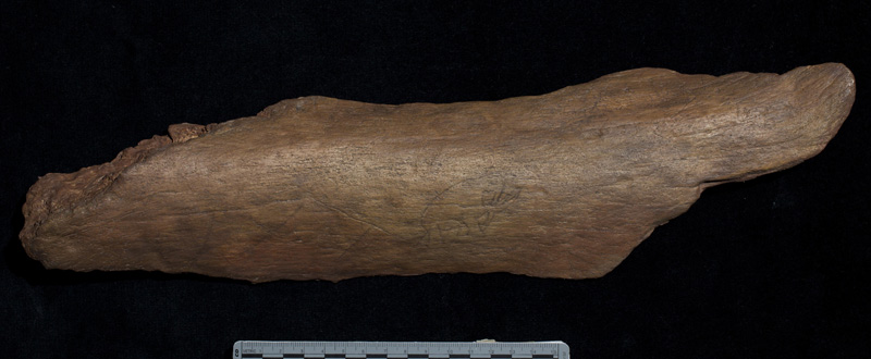 Megafauna bone with inscription