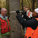 Citizen Scientists measure a tree