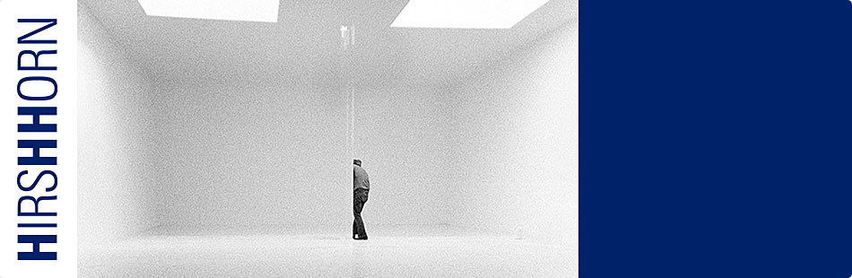 Robert Irwin exhibition