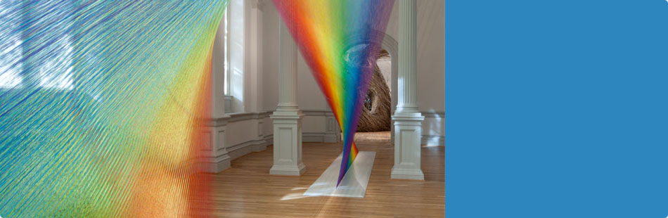 Wonder: Opening Exhibition at the Renwick Gallery
