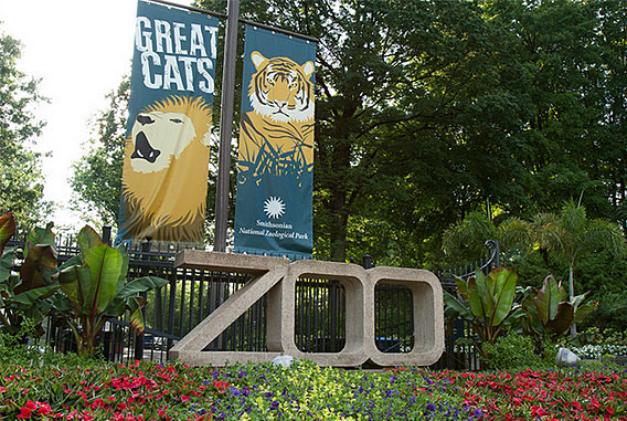 images for National Zoo
