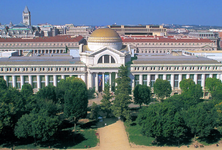 Aerial view of building and trees on the National Mall