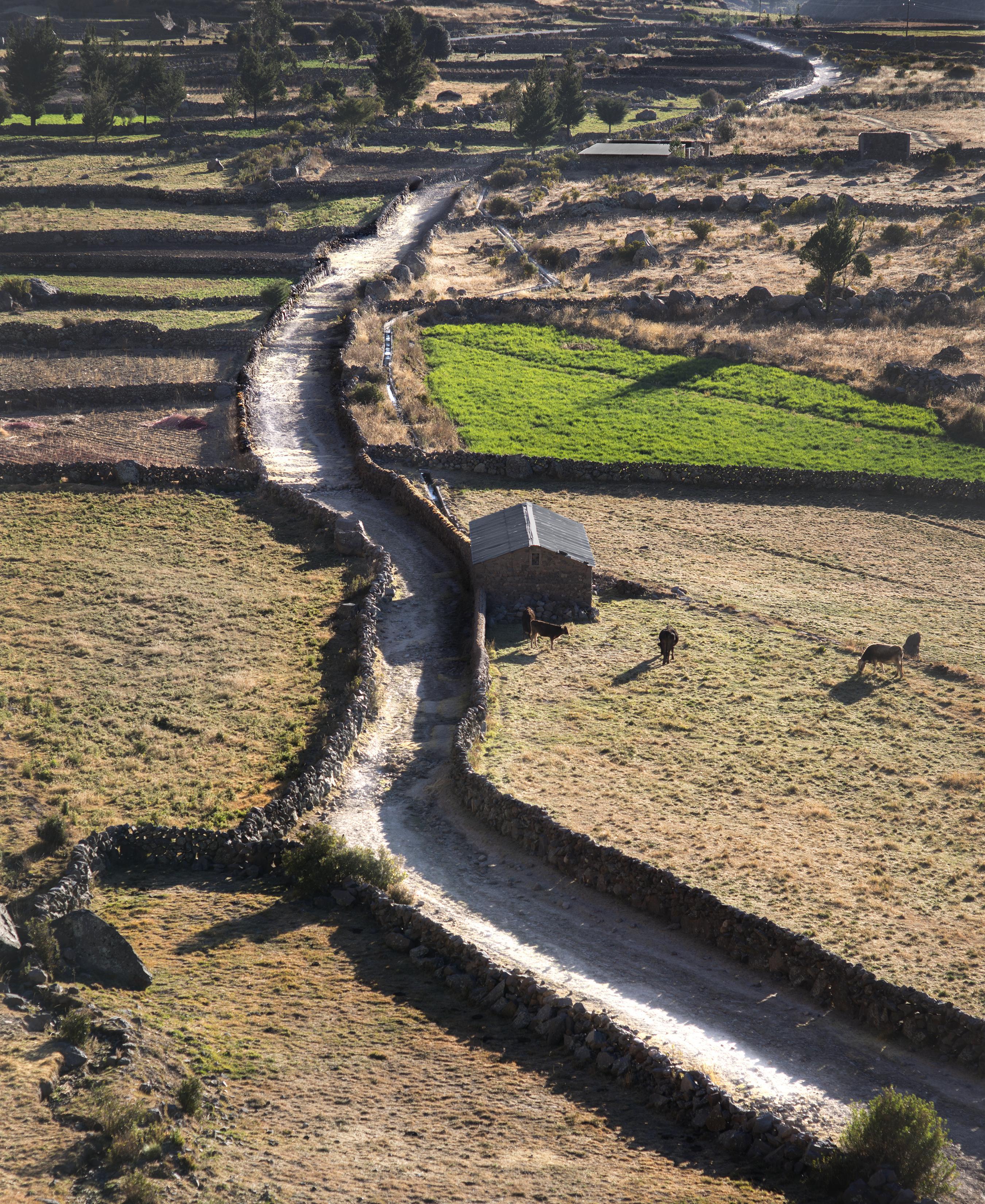 El Camino Inka Conserva Su Monumentalidad Como Obra De Alta