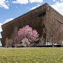African American Museum building exterior