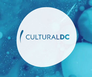 "Anacostia Community Museum To Host CulturalDC's ""Block Watch"""