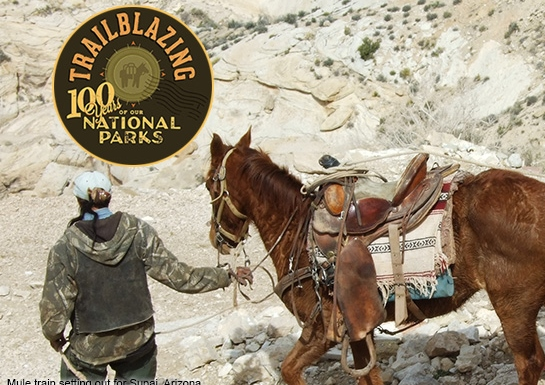 Mail mule train with Trailblazing logo