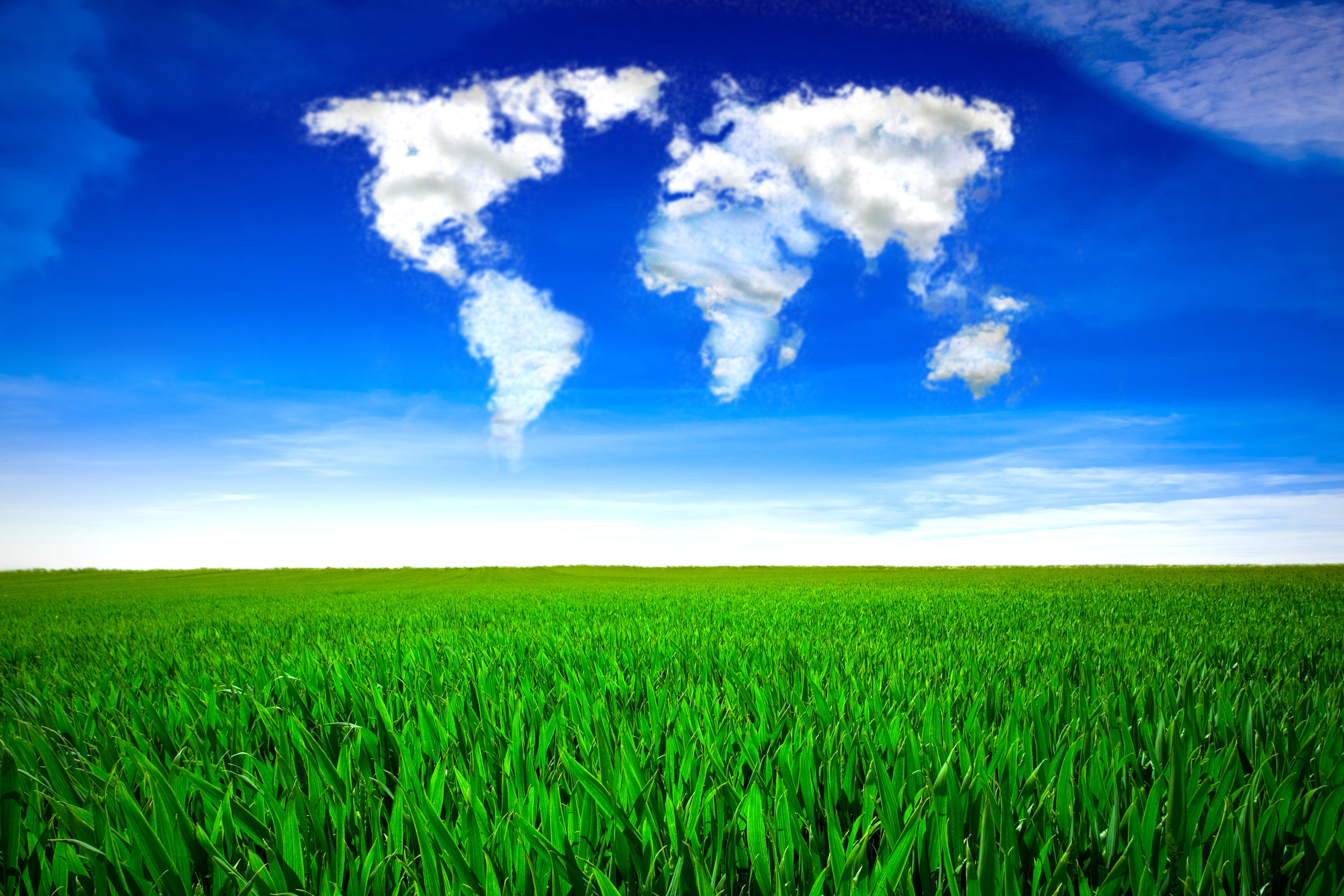 Grass field with clouds in the form of a world map