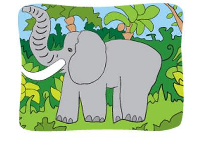 Smithsonian Sleepovers elephant