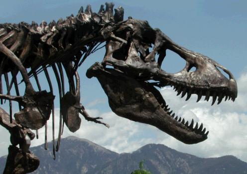 Wankle T. rex