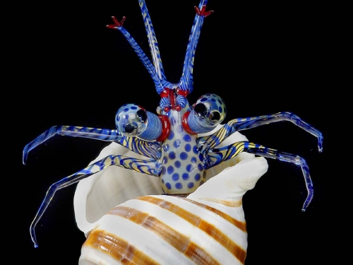 Glass sculpture of a blue hermit crab emerging from a brown and white striped shell.