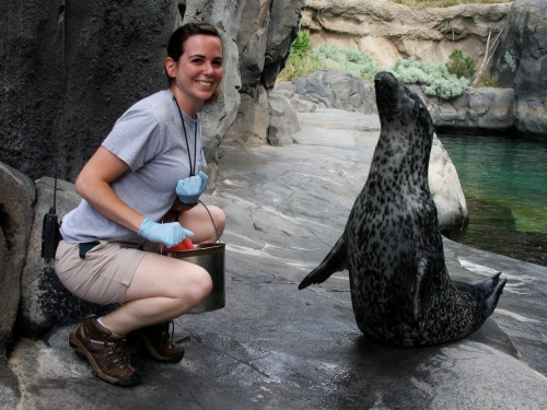American Trail intern with seal, National Zoo