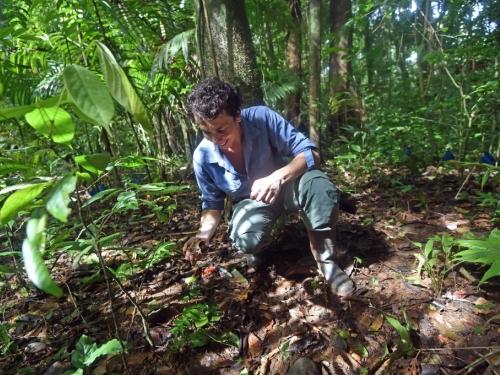 post-doc fellow doing fieldwork