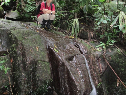 Researcher in streambed above small waterfall