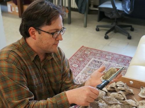 Anthropologist looks at fossil