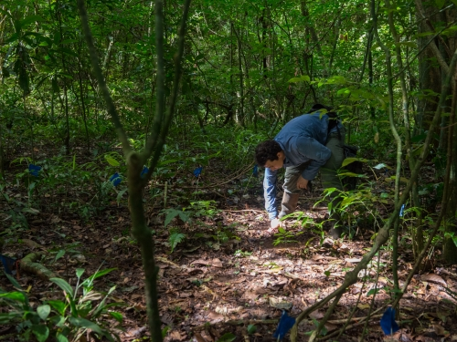 post doc doing field work