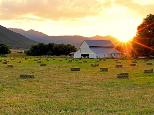 Sun setting behind barn