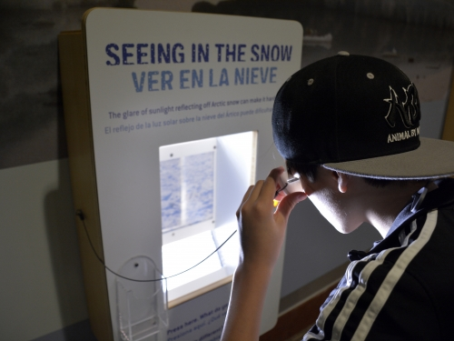 Boy reads interactive screen
