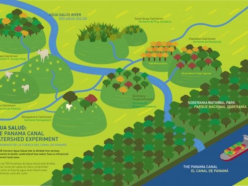 Diagram of watershed