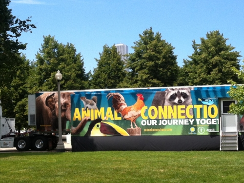 Animal Connections truck