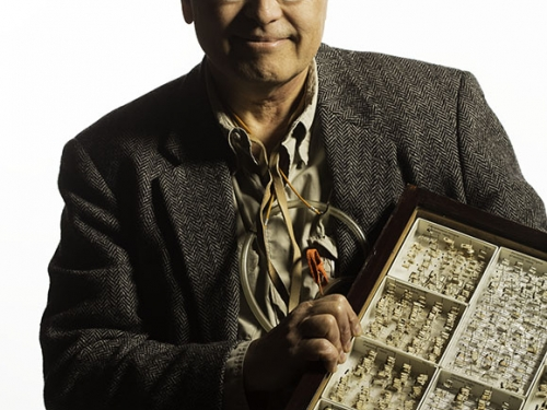 Curator wearing miner's light holding box of specimens