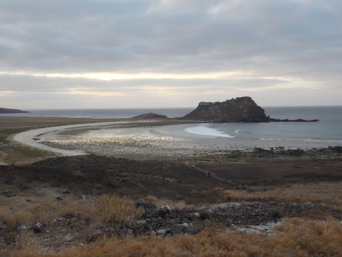 Clarion Island