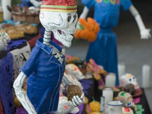 traditional skulls
