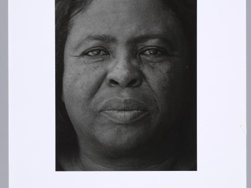 close up portrait of Hamer
