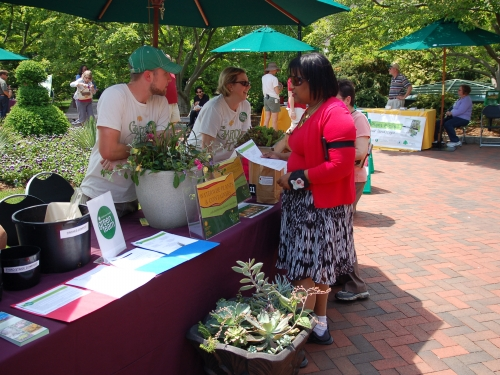 Visitors and volunteers at Garden Fest 2013