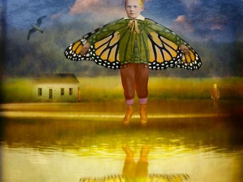 boy butterfly wings art