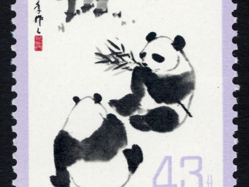 Giant Panda single, China, 1973