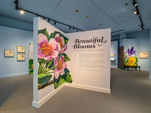 Exhibition hall for Beautiful Blooms exhibition