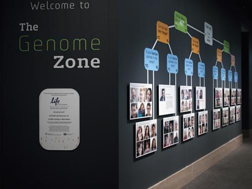Genome exhibit