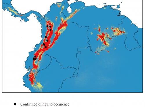 Olinguito Distribution Map