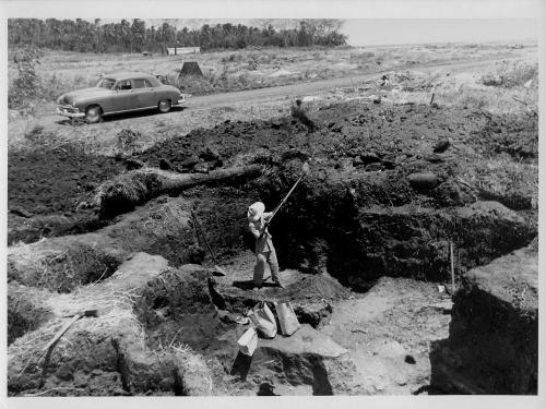 1951 photo of a hired worker at Samuel K. Lothrop's excavation at the Venado Bea