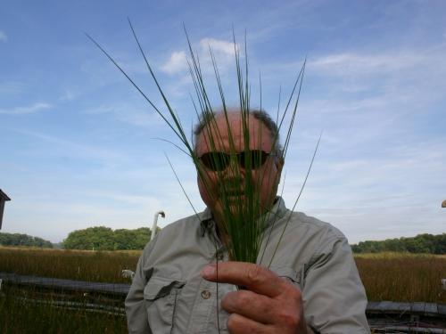 man holding grass