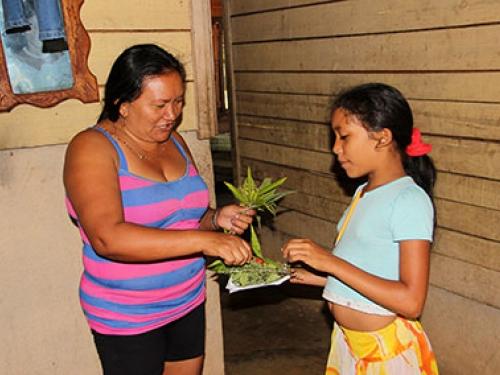 Native plant workshop