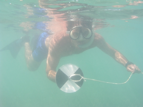 Diver taking readings