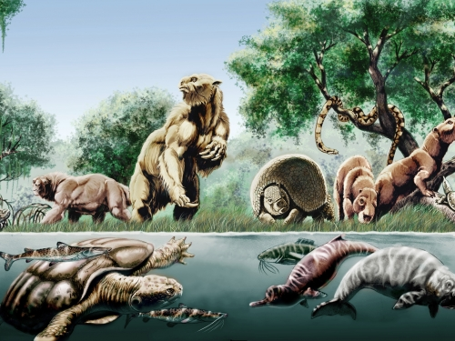 Artists rendering of dinosaurs