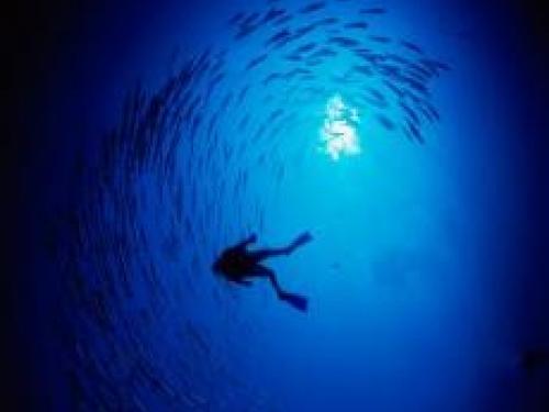 Ocean exploration diver