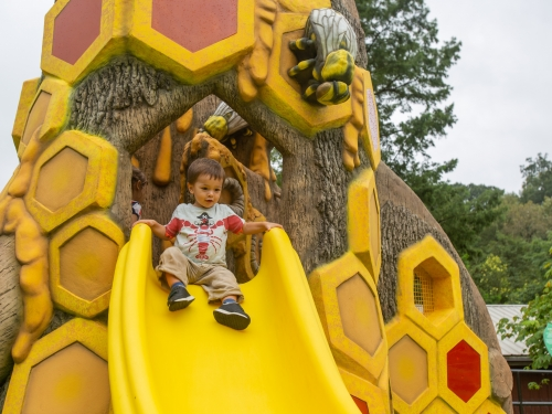 Child on bee-themed slide