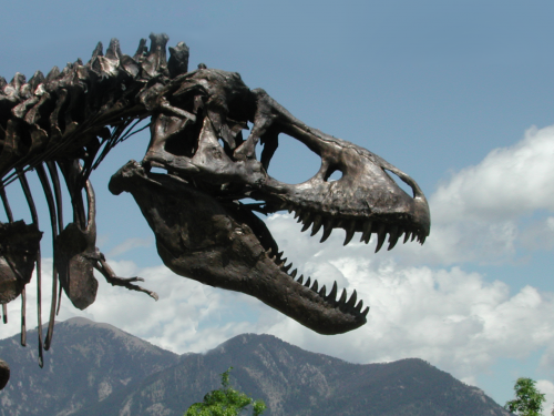 Wankel T. rex