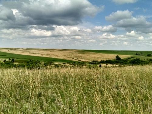 Konza Prairie Biological Station in northeast Kansas