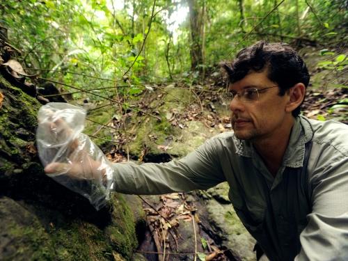 researcher in the field