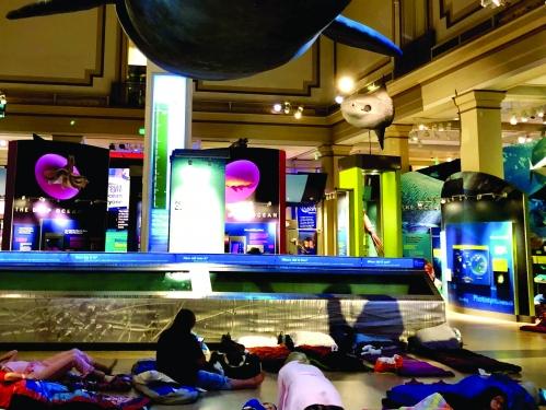 Smithsonian Sleepovers