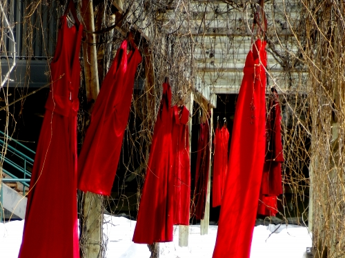 Red Dress Installation